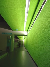 HD-Green-Wall-Ceilings-21